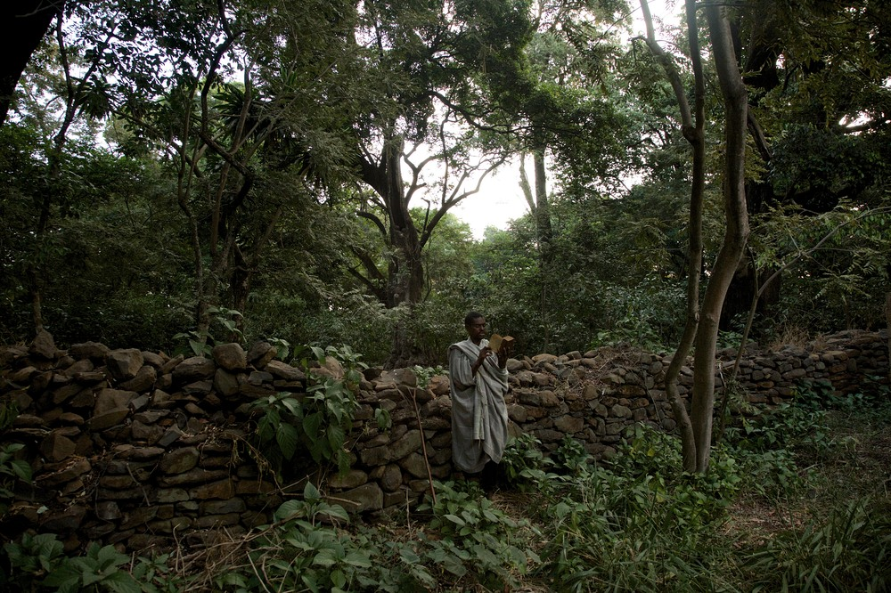 Ethiopia's Church Forests