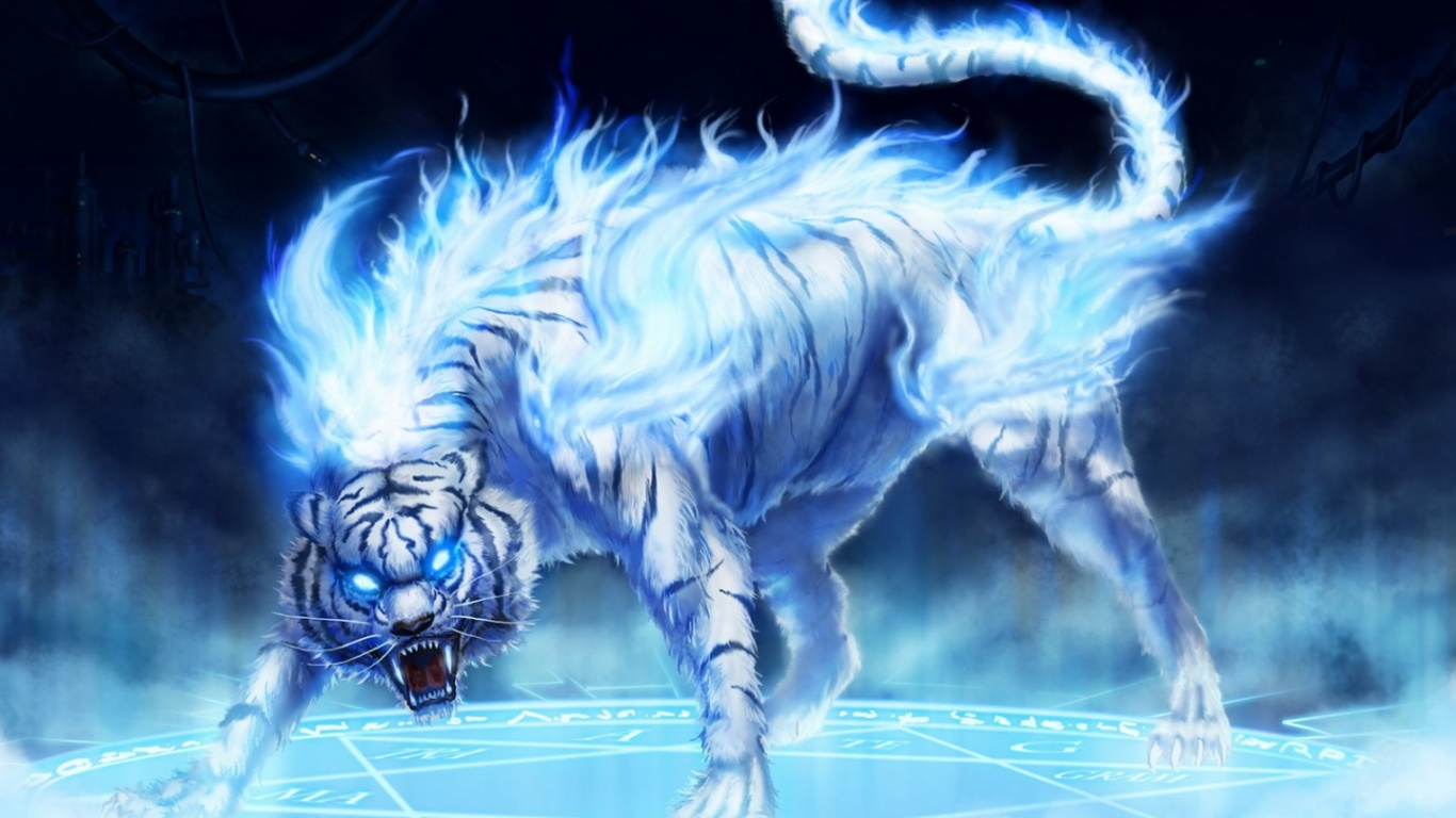 wallpaper hd white tiger - photo #44