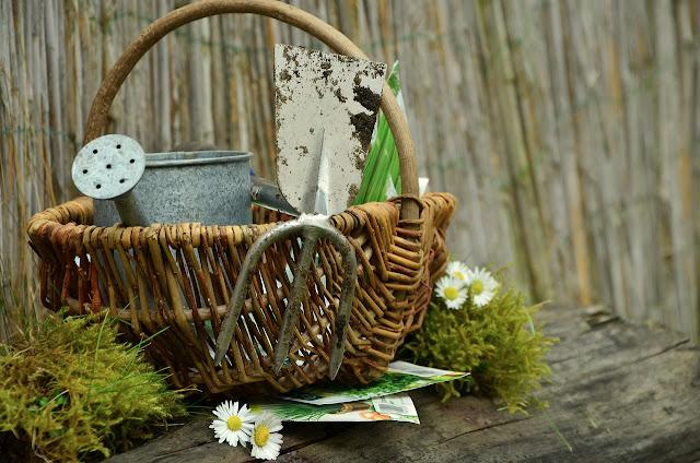 Alltagsaktivierung von Senioren, Gartenaktivitäten, Demenz, Ideen