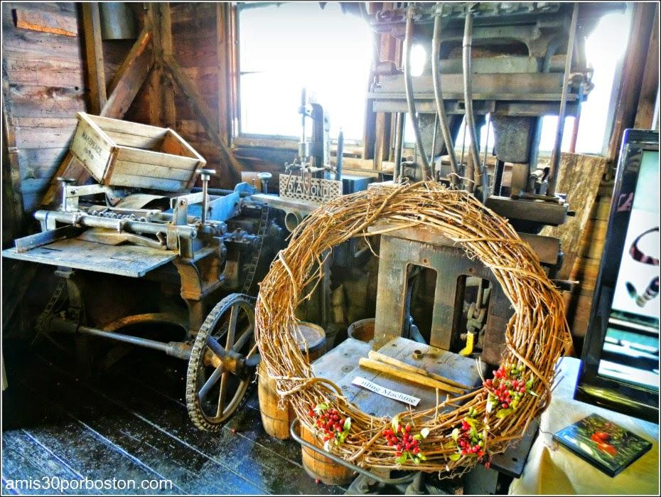 Cosecha De Arándanos en Wareham: Maquinaria de Trabajo