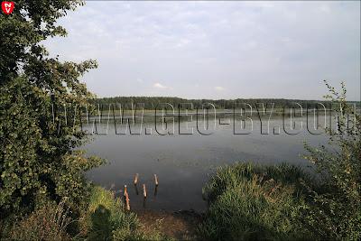 Ляховичское водохранилище у деревни Набережная. Разрушенный пирс
