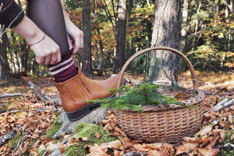 Cueillette en forêt - panier et chaussettes gryffondor