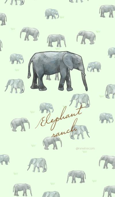 Elephant ranch