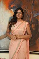 Eesha Rebba in beautiful peach saree at Darshakudu pre release ~  Exclusive Celebrities Galleries 044.JPG