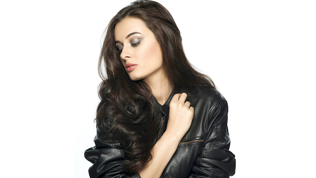 Evelyn Sharma HD Wallpaper