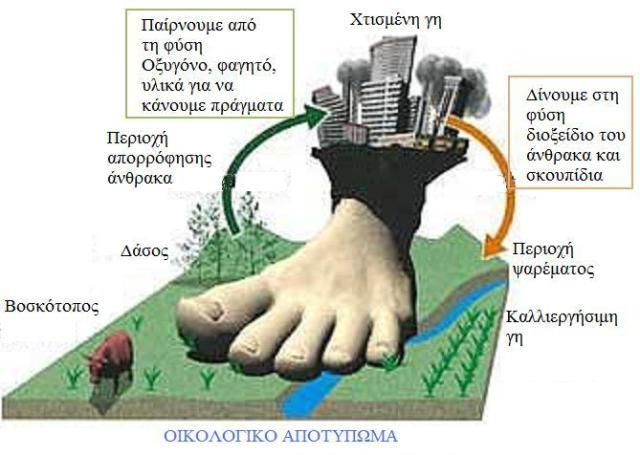 Άνθρακα που χρονολογείται από απολιθώματα PPT