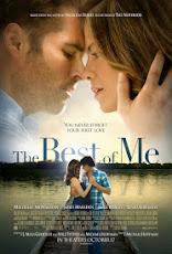 pelicula Lo Mejor de Mí (The Best of Me) (2014)