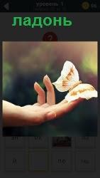 на открытой ладони приземлилась бабочка и расправила крылья