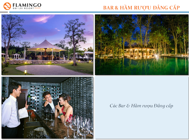 bar va ham ruou flamingo dai lai resort