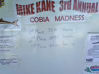 cobia madness canaveral