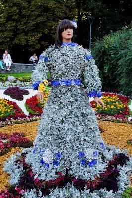 Выставка цветов ко Дню Незалежности 2018 на Певческом поле