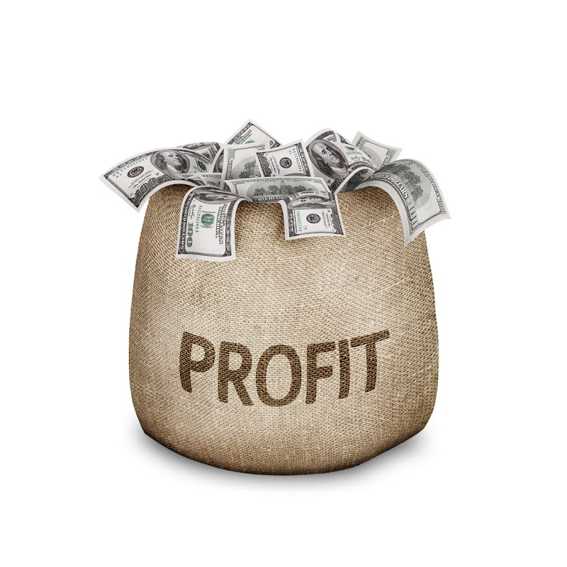 Hobbies That Can Become Profits