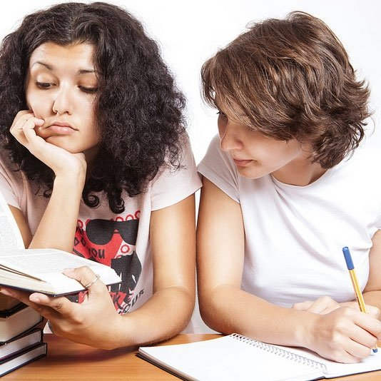 Plan Dissertations