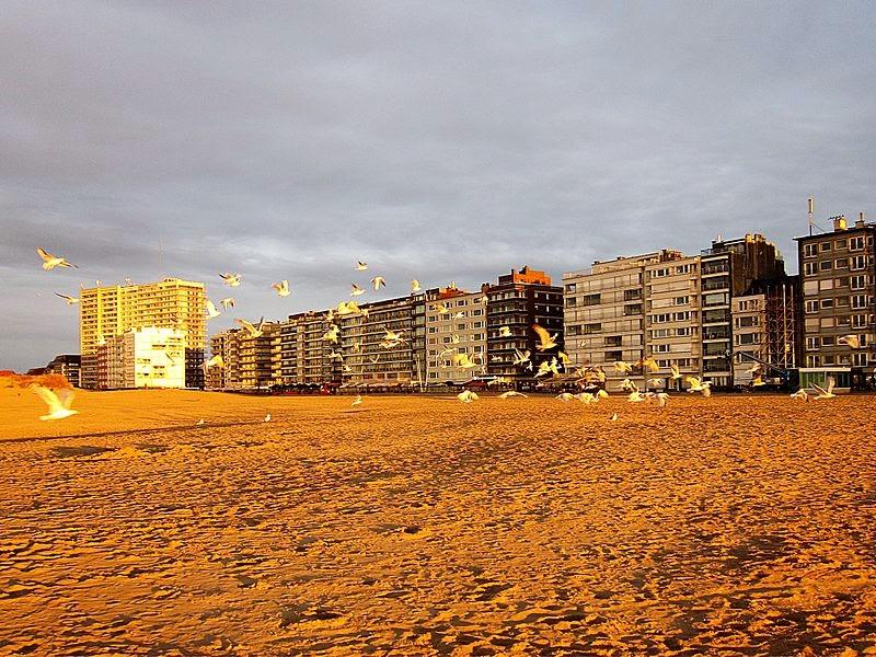 10 Best Places to Holiday in Belgium (100+ Photos) | Oostduinkerke seaside apartments