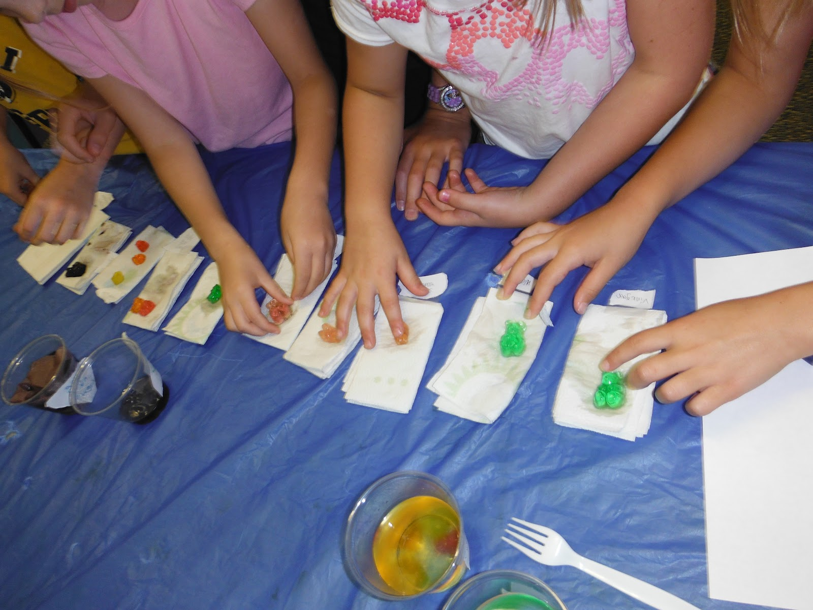 Science Freebie And Gummy Bear Results