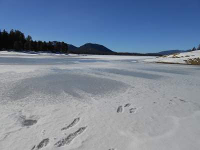 Lake davis, ice, snow, nature