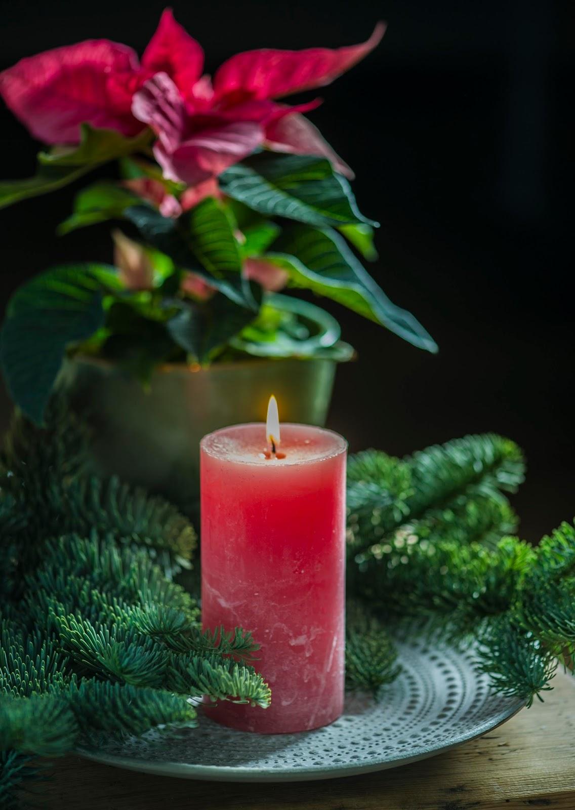 78e64759172 Hästi mõnus on mängida erinevate elavate jõulutaimedega ning küünalde ja  jõuluehetega ning nende värve siis omavahel sobitada. Siin on roosakas  jõulutäht ...