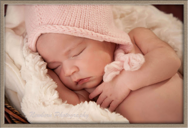 newborn photography pricing of dinky feet