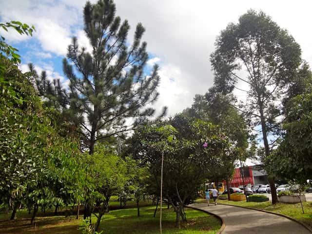 Parque Tiquatira