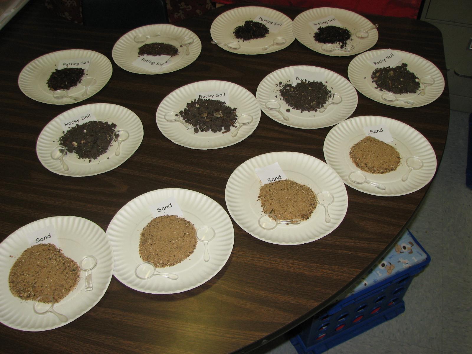First Grade Randomness Rocks And Soil Exploration