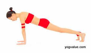 What is Sun Salutation Yoga or Surya Namaskar  How To Do Sun Salutation Yoga Poses yogvalue.com