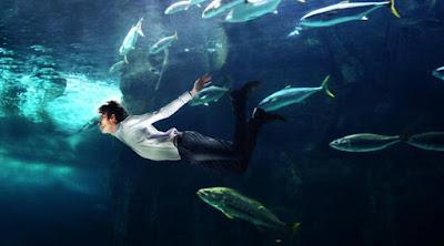 رجل يعوم يسبح فى البحر المحيط عالم البحار الكائنات البحرية الاسماك البحريات man swim sea ocean creatures reef fishes