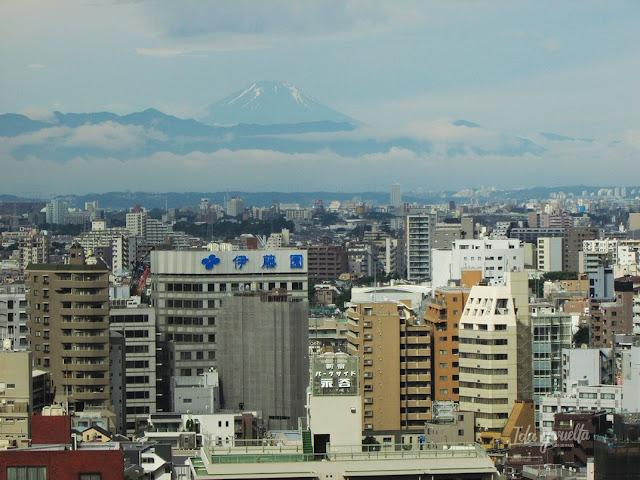 Curiosidades, dudas, reflexiones Japón Fuji