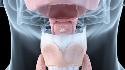 Memahami Peristiwa Kimiawi (Sistem Hormon) pada Manusia_