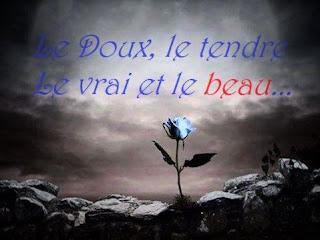 Fleurs bleue pour déclarer son amour