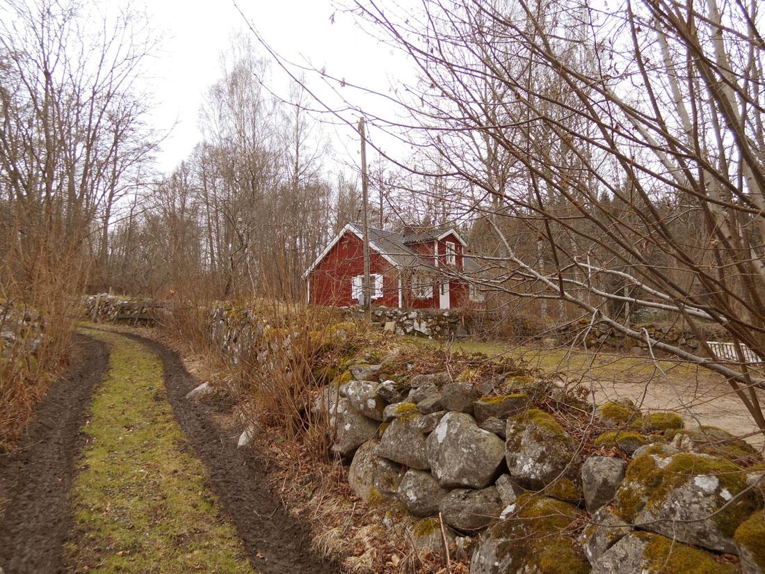Casa in bosco svedese