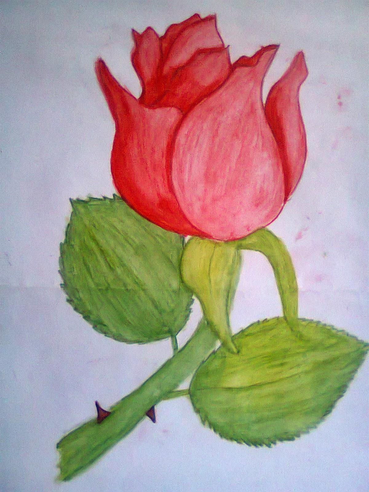 Gambar Lukisan Mudah : gambar, lukisan, mudah, Lukisan, Mudah, Dilukis, Cikimm.com