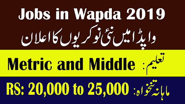 WAPDA New Jobs March 2019 Direct Interview | ShakirJobs.Com