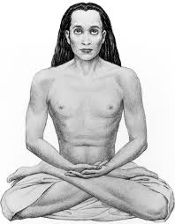 जानिए हमेशा अमर रहने वाले रहस्यमय योगी बाबा के बारे में -Learn about the mysterious Yogi Baba who is always immortal -
