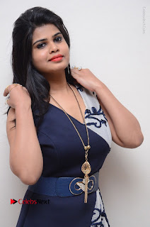 Telugu Actress Alekhya Stills in Blue Long Dress at Plus One ( 1) Audio Launch  0088.jpg