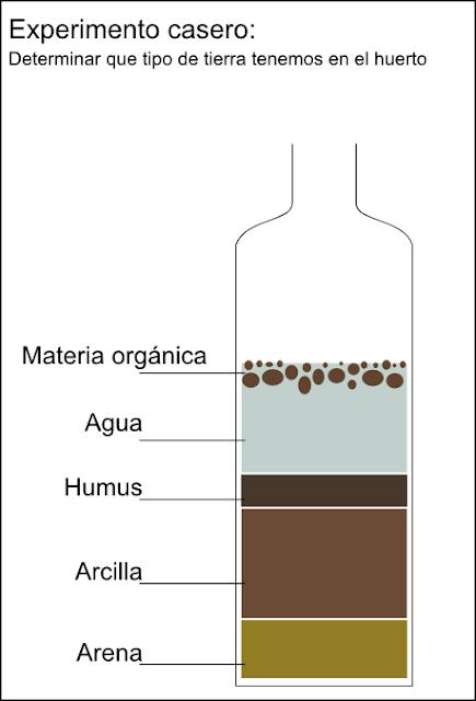 Ilustración del resultado del experimento.