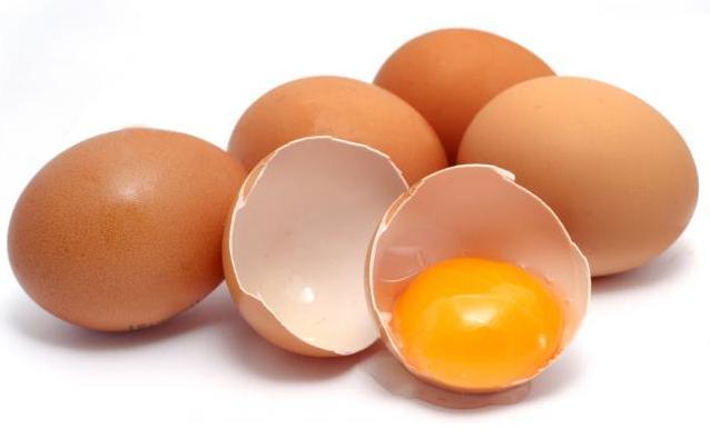 10 Makanan Lezat yang Mengandung Protein Tinggi