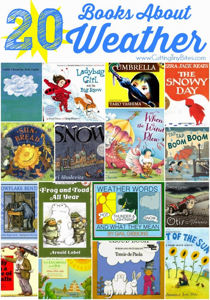 Books About Weather- Book review list with choices for toddlers, preschoolers, and elementary.  Rain, snow, wind, sun, and storms!