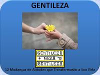 https://gilsontavares.blogspot.com/2019/01/gentileza-12-mudancas-de-atitudes-que.html