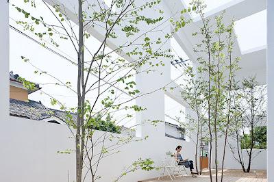 Casa N Sou Fujimoto . Patio. 2011. Japón.