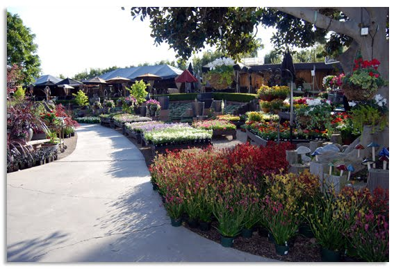 Garden Landscaping Ideas Rogers Gardens A Favorite
