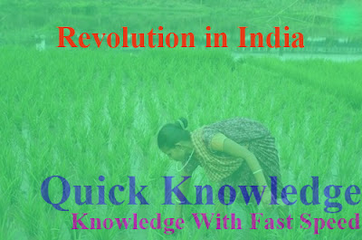 List of Revolution in India