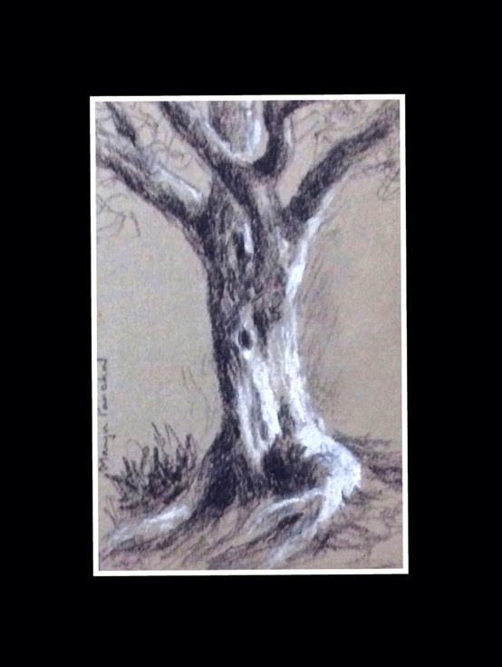 Charcoal and soft pastel sketching of a tree on CANSON MI TENTES paper by Manju Panchal
