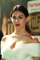 Amyra Dastur in Off Shoulder Deep neck  at IIFA Utsavam Awards 2017  Day 2 at  08.JPG