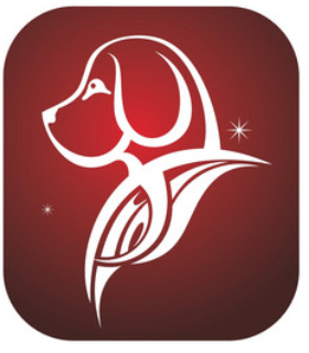 6a408764f The horoscope chinese 2019 for the Dog zodiac sign.