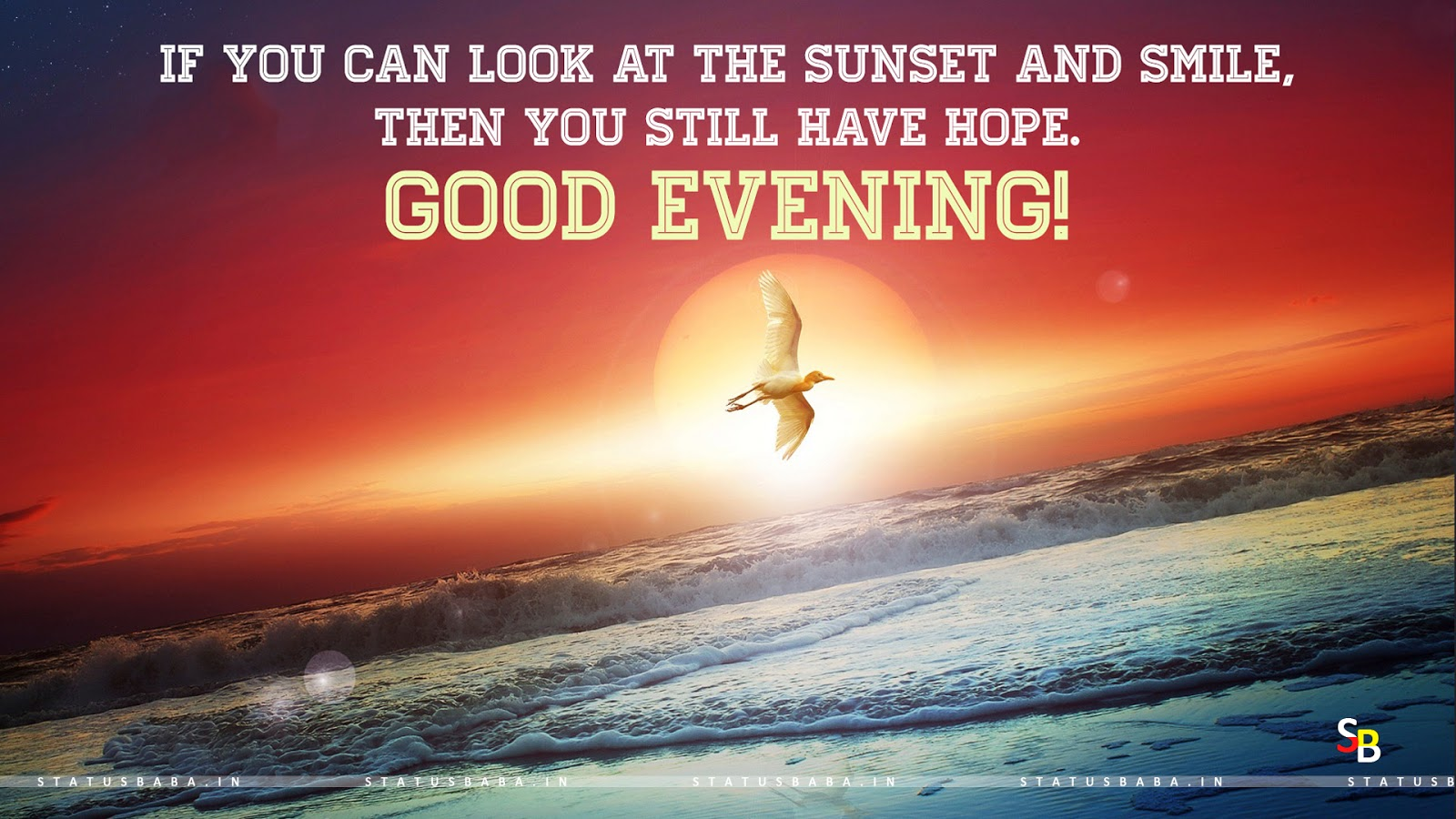 Beautiful Good Evening Quotes For Wishes Statusbaba