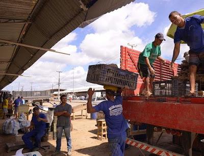 Ceasa-PE teme desperdício de alimentos em caminhões parados