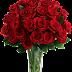 Manfaat Bunga Mawar Yang Tidak Kamu Ketahui