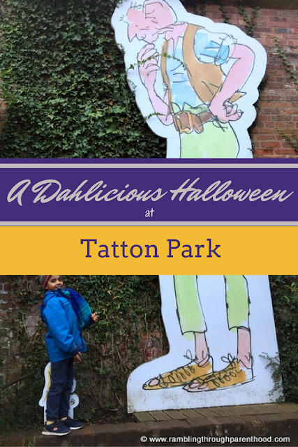A Dahlicious Halloween at Tatton Park