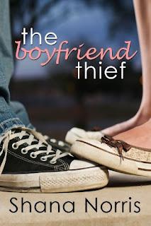 The Boyfriend Thief – Shana Norris