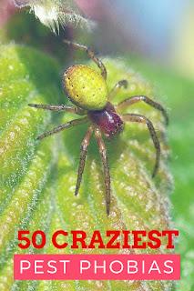 50 Crazy Pest Phobias